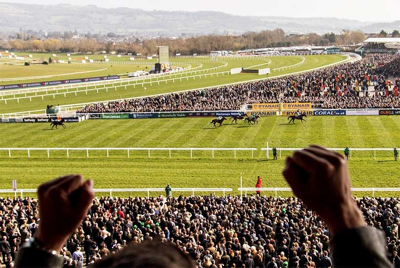 event_horse_racing_cheltenham_lollipop_2021_3 - Copy