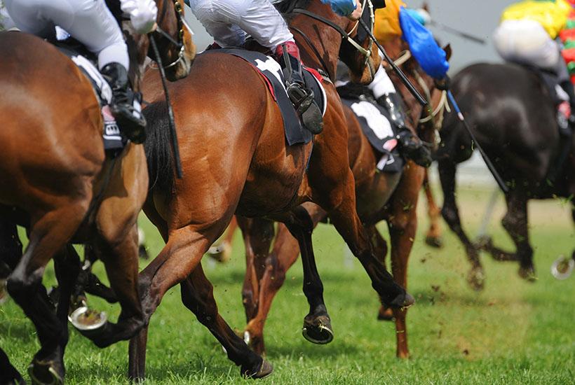 Horseracing - Cheltenham Festival 2020 - Long Run Balcony Boxes